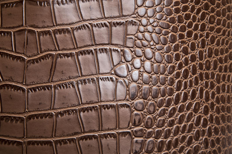 Leather texture. Background art abstrac stock photos