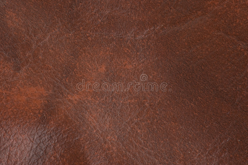 Leather texture for backgrounds stock image