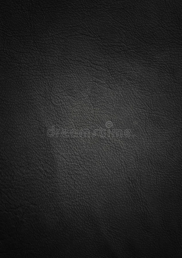 Download Leather texture stock photo. Image of animal, blank, grain - 30970930