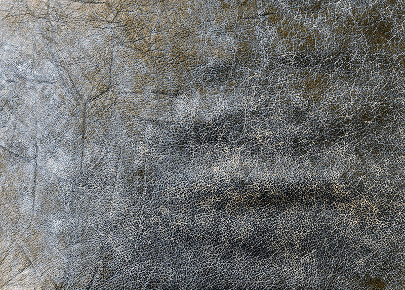 Leather texture. Genuine leather texture photo background stock images
