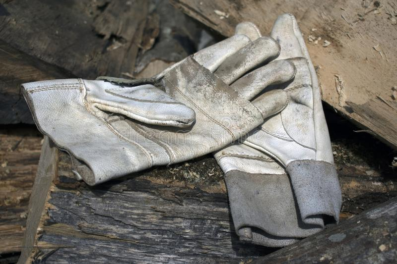 Leather working gloves on a pile of stumps stock image