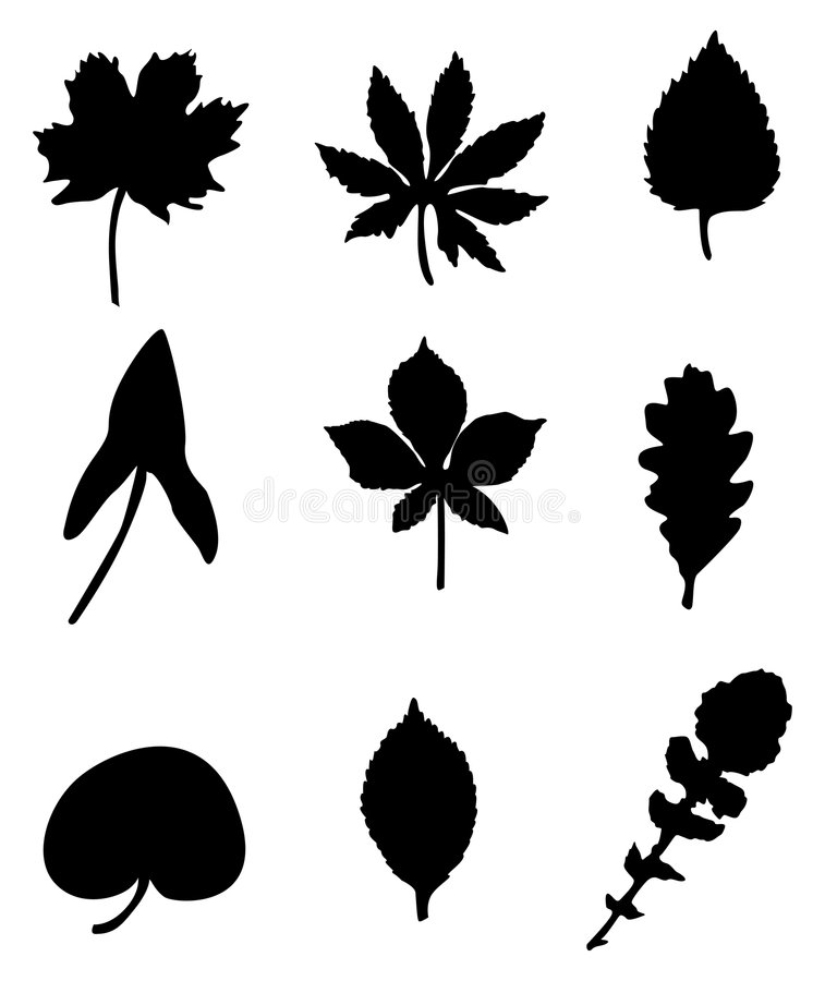 Download Leave silhouettes stock vector. Image of background, leaf - 1420225