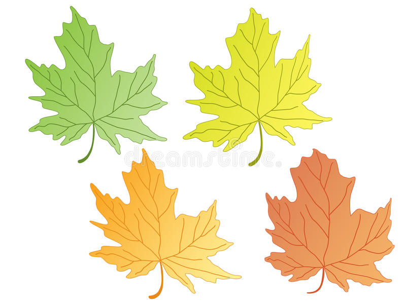 Download Leaves stock vector. Image of colored, illustration, abstract - 10775633