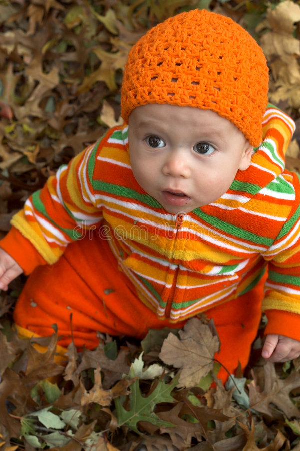 Download Among the Leaves stock image. Image of crochet, child - 2254105