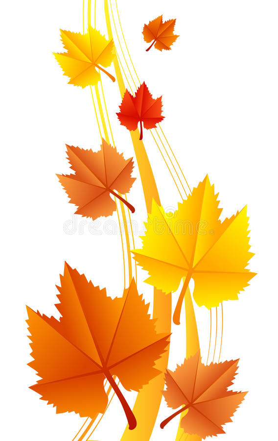 Download Leaves stock vector. Image of summer, blank, abstract - 27053247