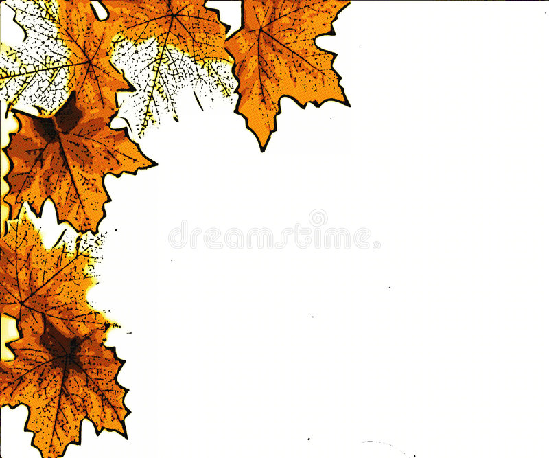 Leaves. Illustration I did of leaves in fall colors for background or design vector illustration