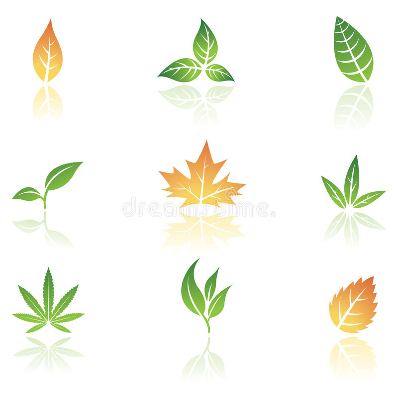 Download Leaves stock vector. Image of element, branch, grass, floral - 4981775