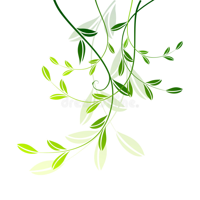 Download Leaves stock vector. Illustration of flora, greenish, stencil - 7835833
