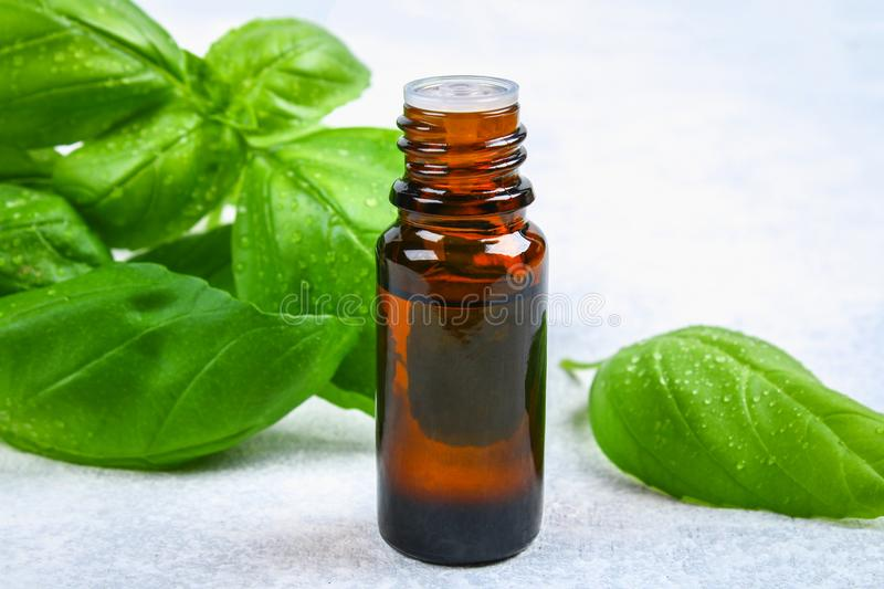 Leaves of basil and a small bottle of oil on a concrete table. stock photo
