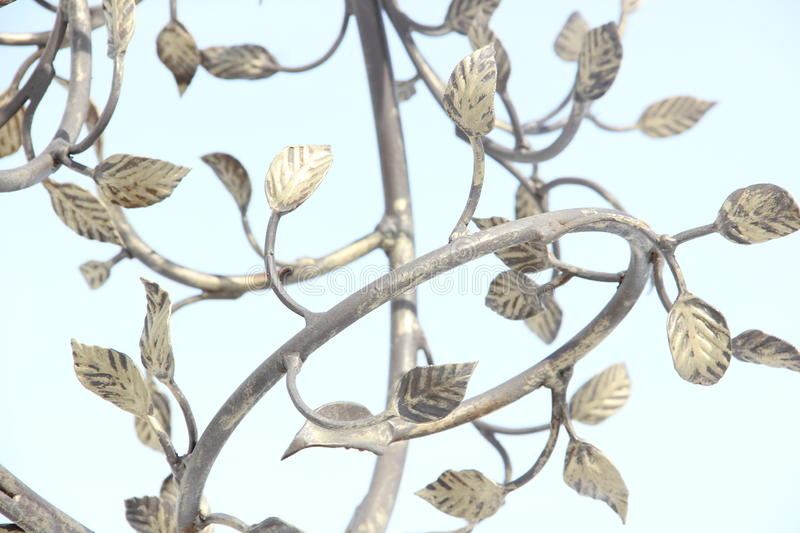 The leaves on the branches. Against the sky royalty free stock photography