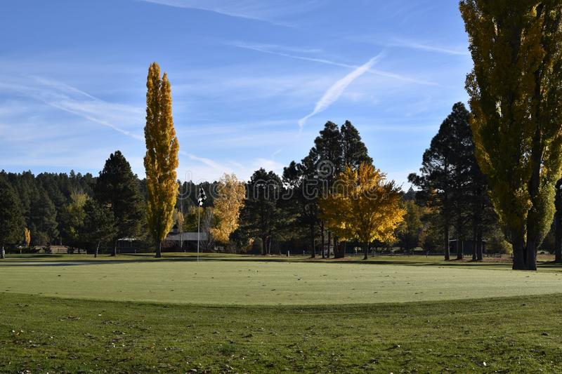 Putting green on golf course royalty free stock photo