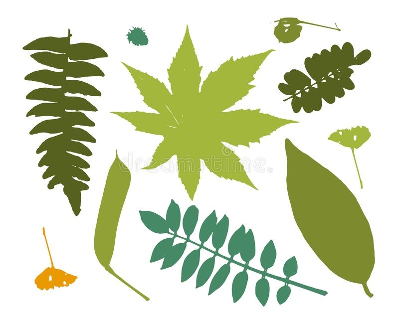 Leaves collection for your design royalty free illustration