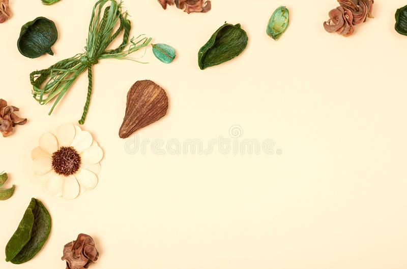 Leaves composition. Nature concept background. Flat lay. And top view photo stock images