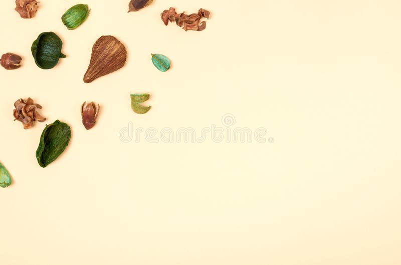 Leaves composition. Nature concept background. Flat lay. And top view photo stock photography