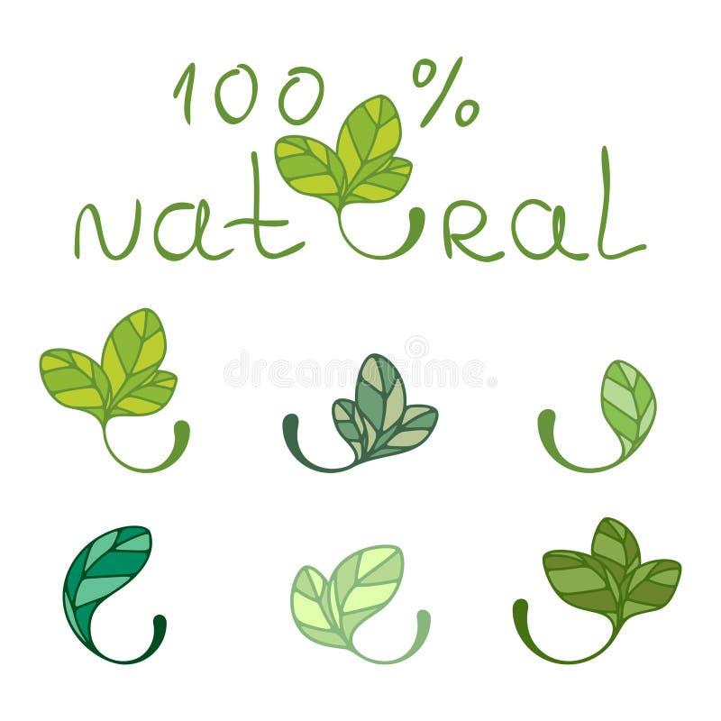 Leaves - design elements stock illustration