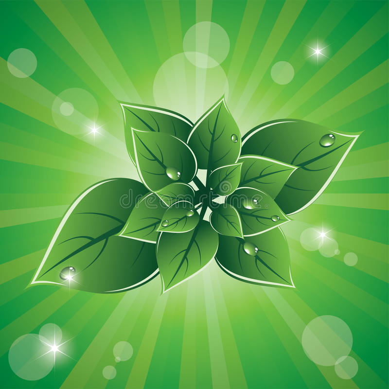 leaves för designecogreen royaltyfri illustrationer