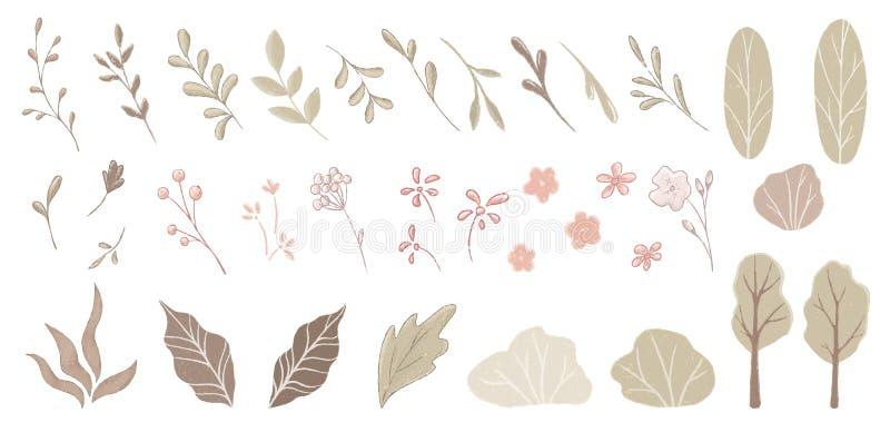 Leaves, flovers, bushes, trees vector illustration