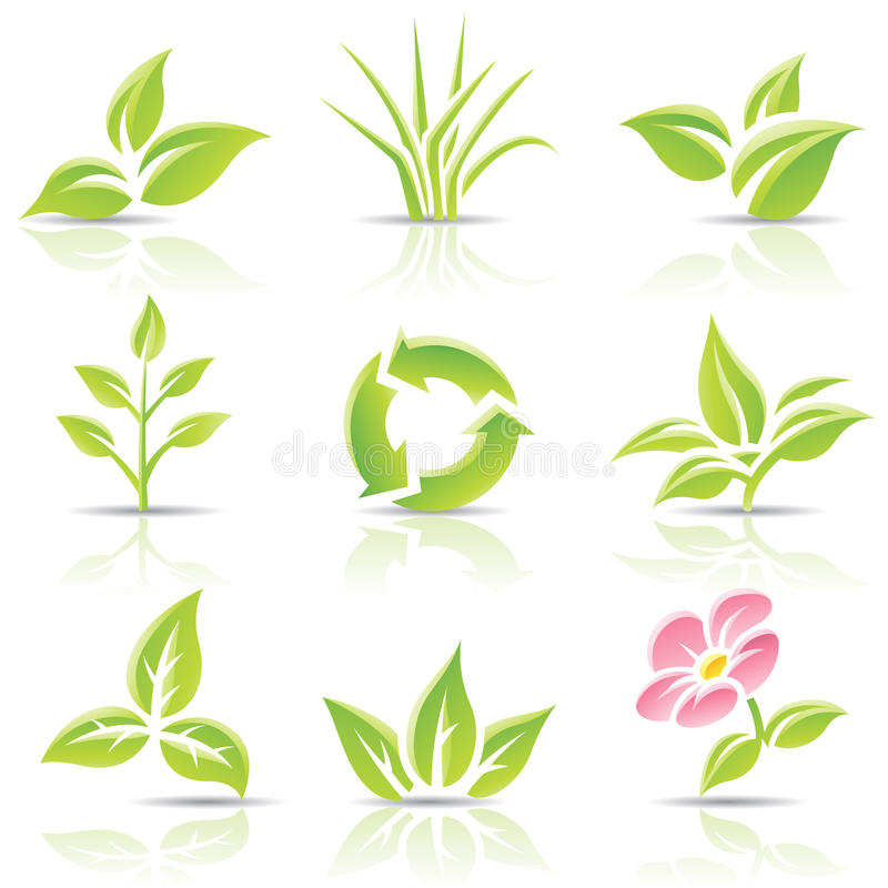 Leaves and a flower royalty free illustration