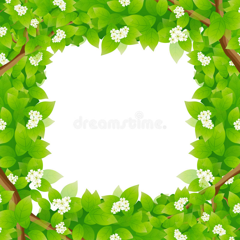 Download Leaves Framing A Message Area Stock Vector - Image: 25665551