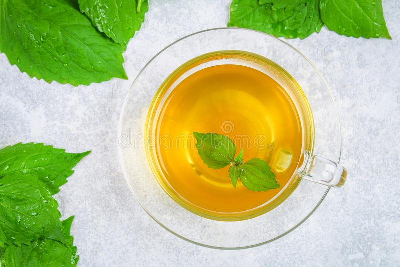 Leaves of fresh green nettle and a clear glass cup of herbal nettle tea on a gray concrete table. Top view. Leaves of fresh green nettle and a clear glass cup royalty free stock photo