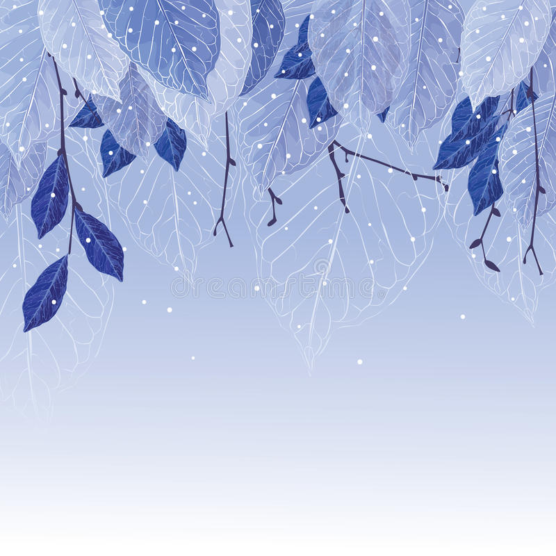 Leaves in the frost winter background. Leaves covered with frost, winter background. Frozen leaves, blue colors, the trees, snowing. Beautiful background for vector illustration