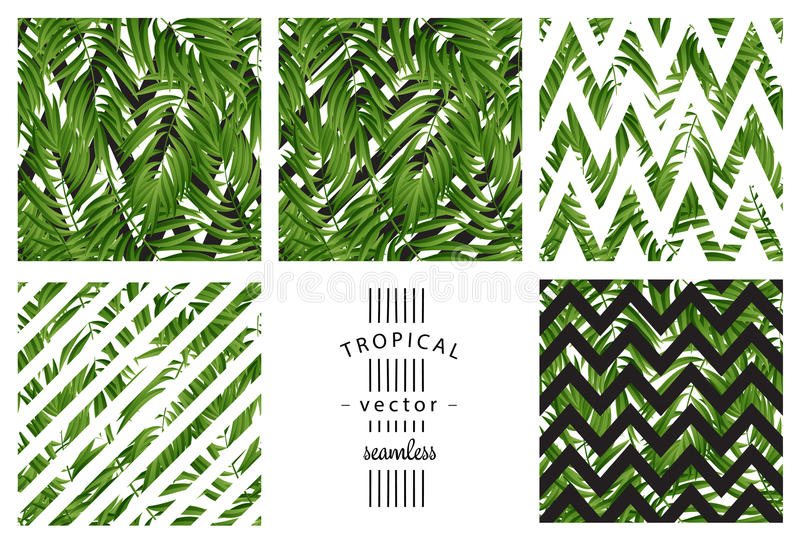 leaves gömma i handflatan tropiskt seamless vektor stock illustrationer