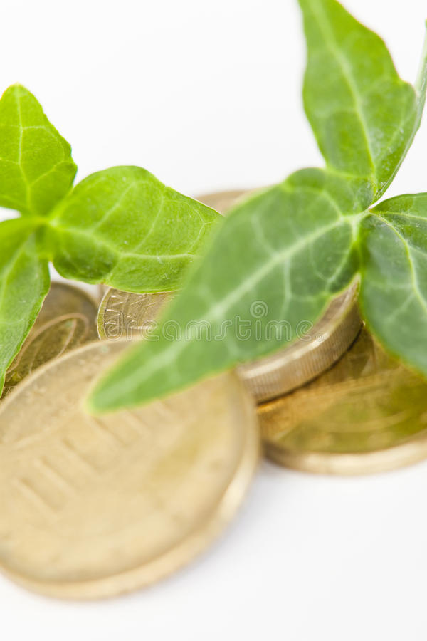 Leaves on Gold Coins stock photography