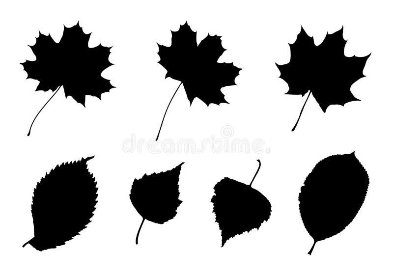 leaves inställda silhouettes royaltyfri illustrationer