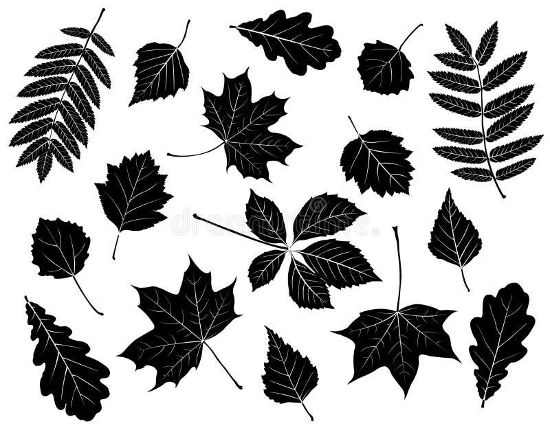 leaves inställda silhouettes stock illustrationer