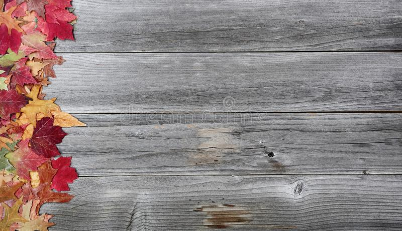 Leaves on left border of aged wood for the Thanksgiving Autumn holiday season. Leaves on left border of weathered wood for the Thanksgiving Autumn holiday season stock photo