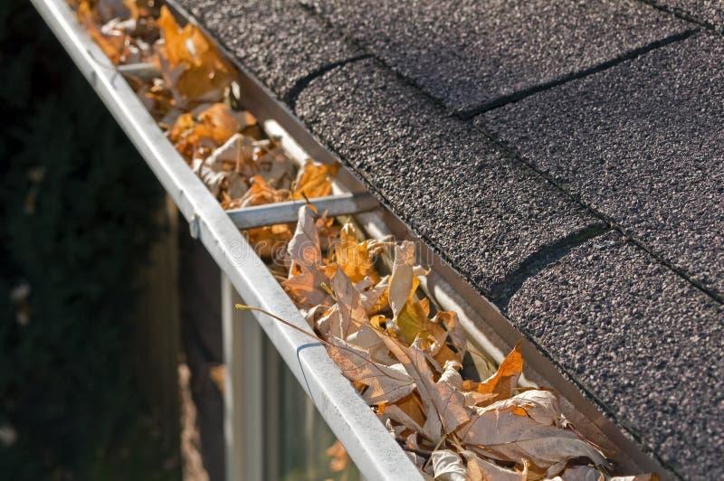 Leaves in rain gutter. Home maintenance problem: Fall leaves in rain gutter stock images