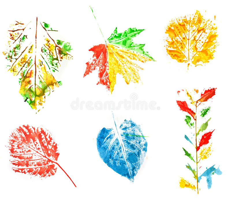 Download Leaves set stock illustration. Image of paint, texture - 22832246