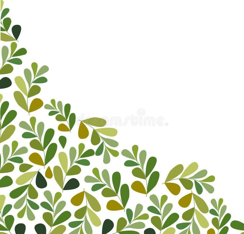Free Leaves Set Isolated On White Background Stock Photo - 115558860