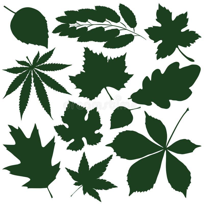 Leaves. Set silhouettes green autumn leaves. vector illustration stock illustration