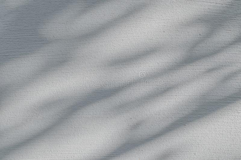 Leaves Shadow on the white concrete wall stock photo