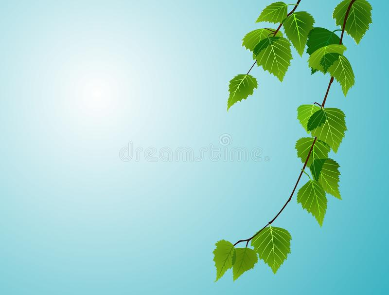 Leaves on sky royalty free illustration