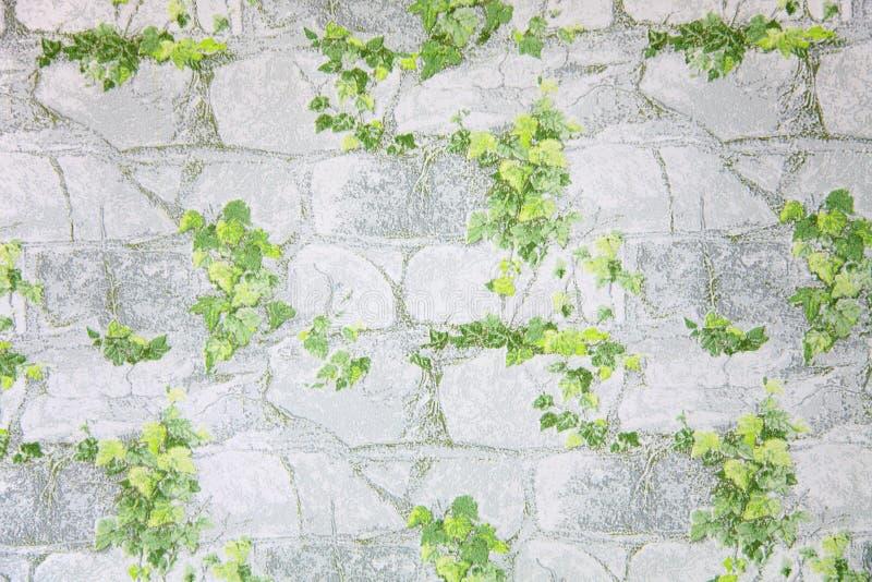 Download Leaves on stone wallpaper stock illustration. Illustration of concrete - 5722071