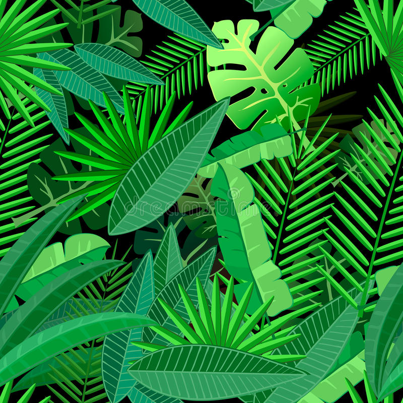 Leaves of tropical palm tree. Seamless pattern on vector illustration