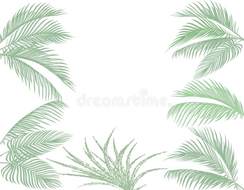 Leaves of tropical palms in pastel tones. Set. Monster, agave. Isolated on white background. illustration royalty free illustration