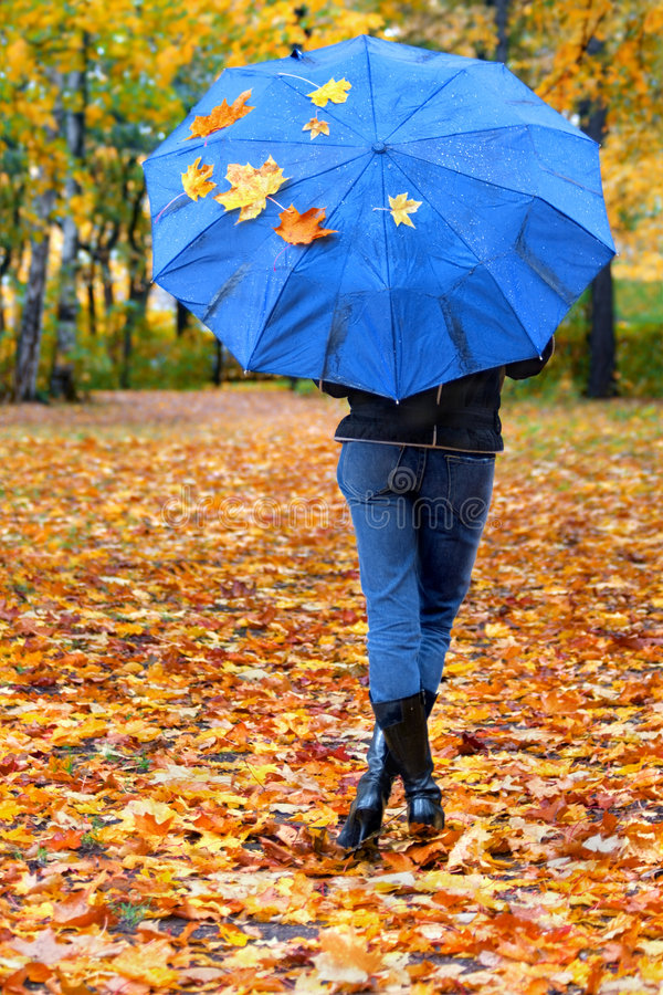 Download Leaves&umbrella-1 Royalty Free Stock Photo - Image: 1413155
