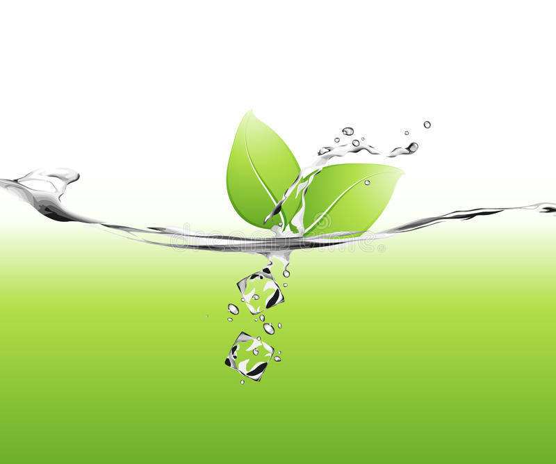 Download Leaves in water stock vector. Illustration of digital - 9754872