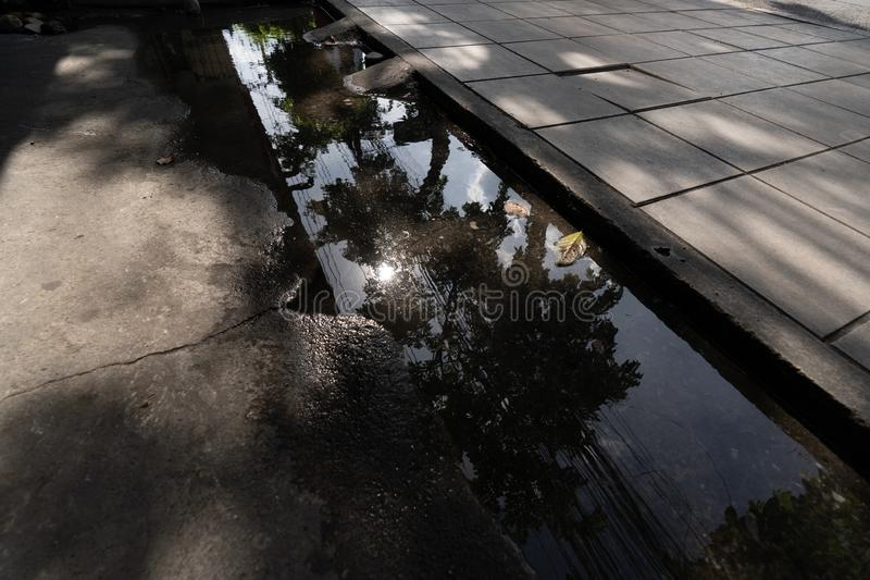Leaves in waterlogged in the street after the rain. stock photo