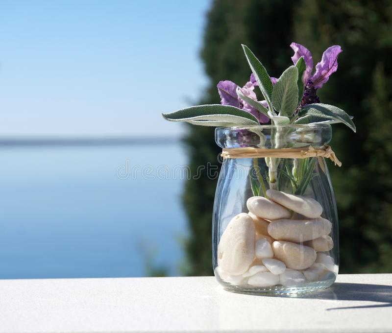Leaves of young sage plant and flowers of lavender in a little jar with blue sea and nature background royalty free stock image
