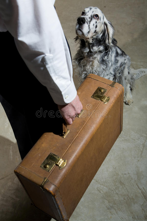 Download Leaving stock image. Image of sitting, adult, baggage - 14114407