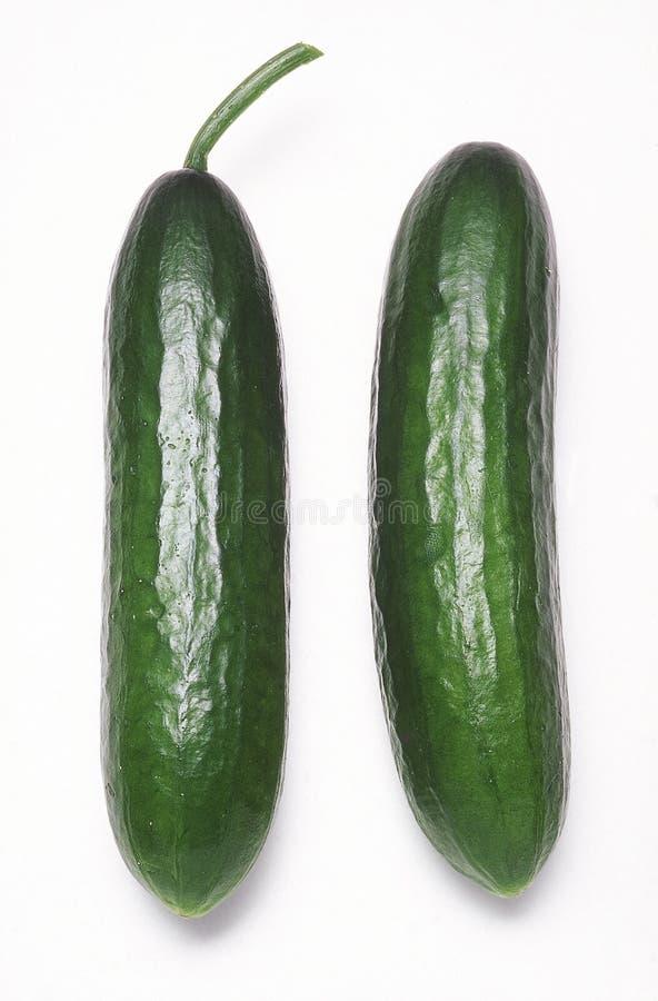Free Lebanese Pickling Cucumbers Royalty Free Stock Photos - 4970998