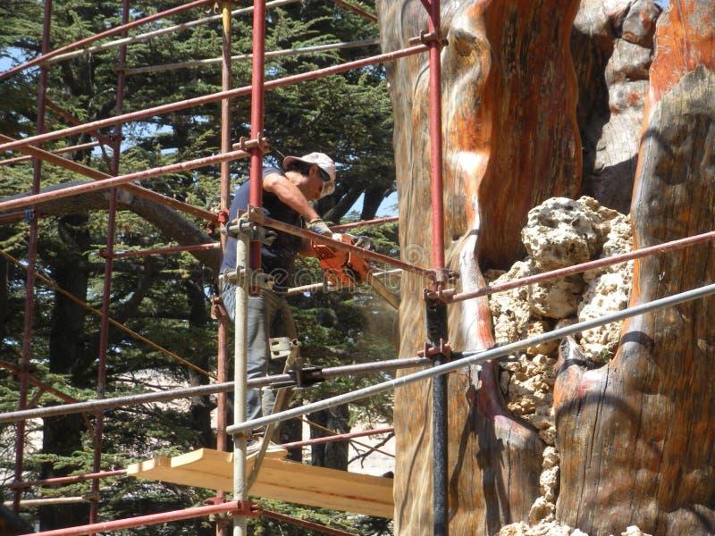 Lebanon Cedar, Carving Cedar Wood, Lebanon royalty free stock photography
