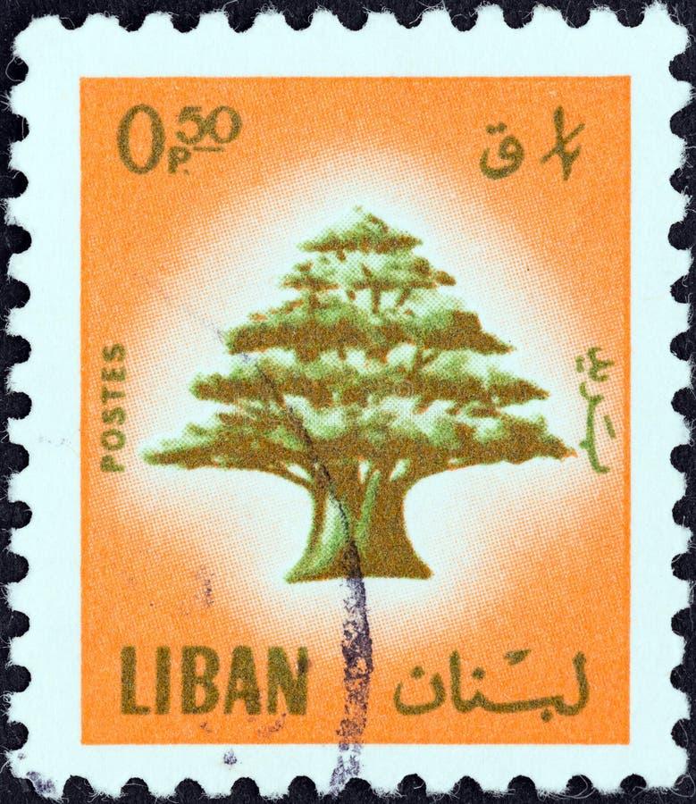 LEBANON - CIRCA 1974: A stamp printed in Lebanon shows Cedar of Lebanon, circa 1974. royalty free stock photo