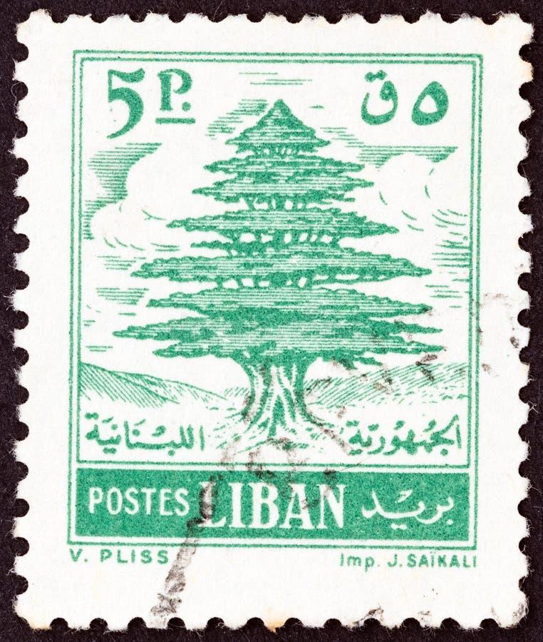 LEBANON - CIRCA 1960: A stamp printed in Lebanon shows Cedar of Lebanon, circa 1960. stock photography