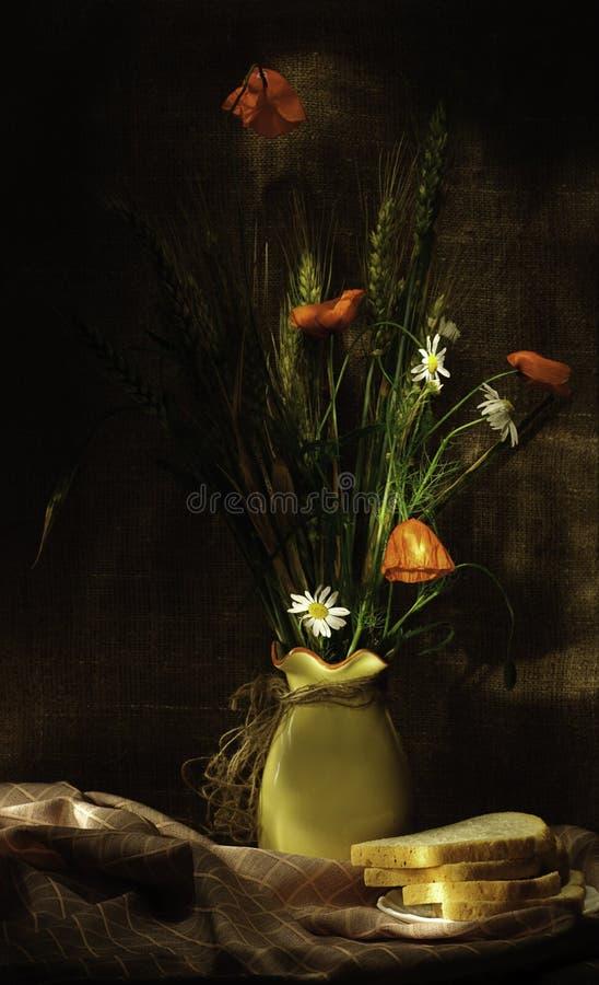 Leben der wilden Blumen noch lizenzfreie stockfotografie