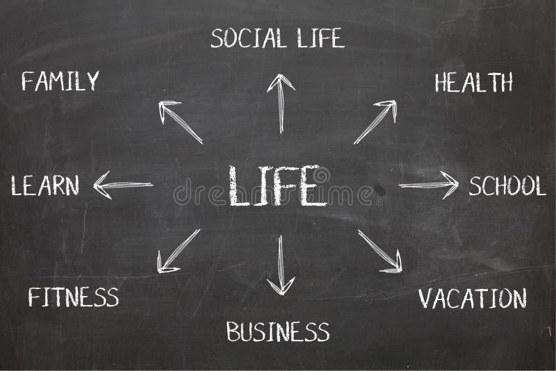 Leben-Diagramm auf Tafel stockfotos